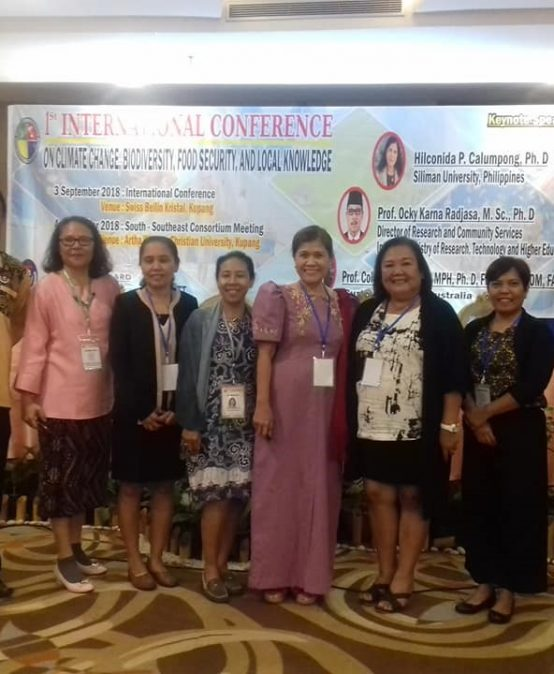 SU IEMS faculty members speak at international confab in Indonesia