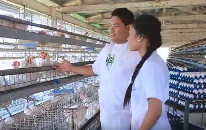 16 Pass Agriculturist Licensure Exam